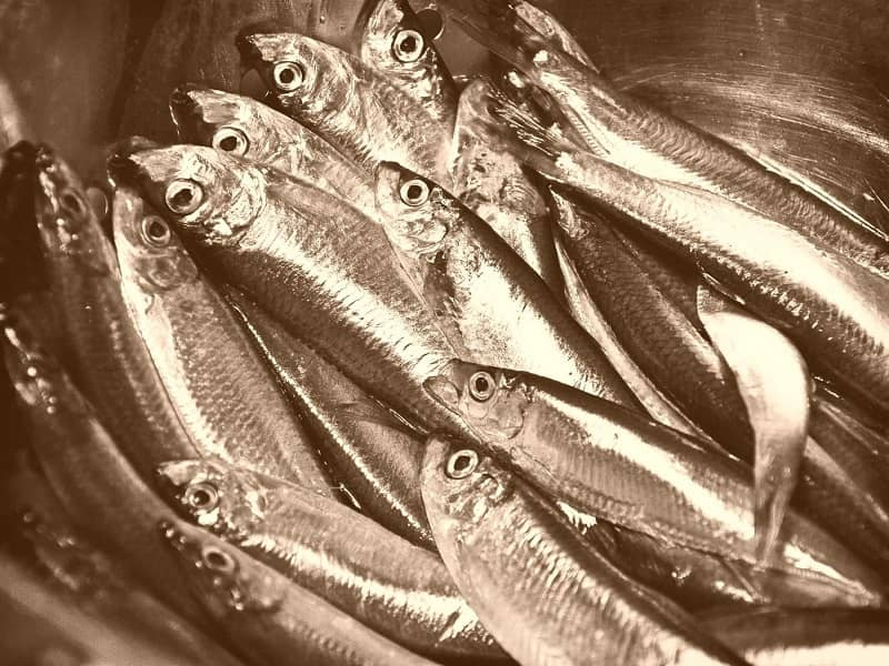 supprimer les odeurs de poisson en cuisine